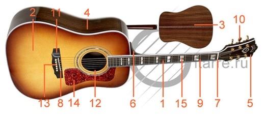 устройство гитары_1
